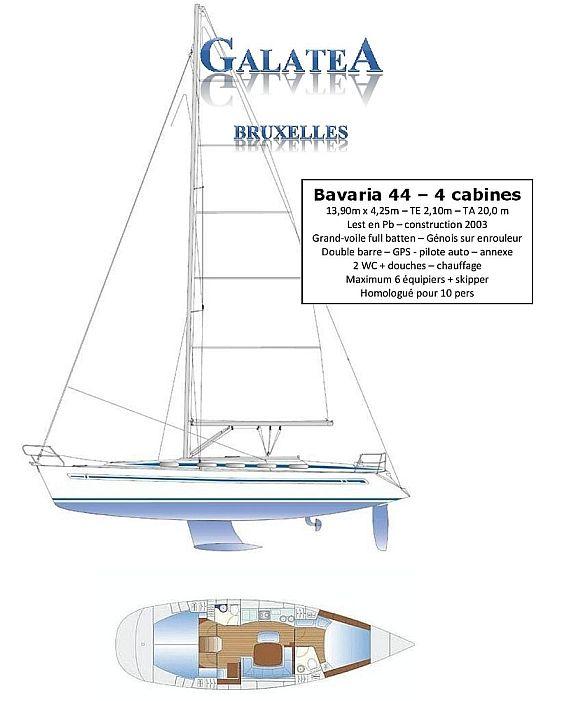 Galatea bavaria44